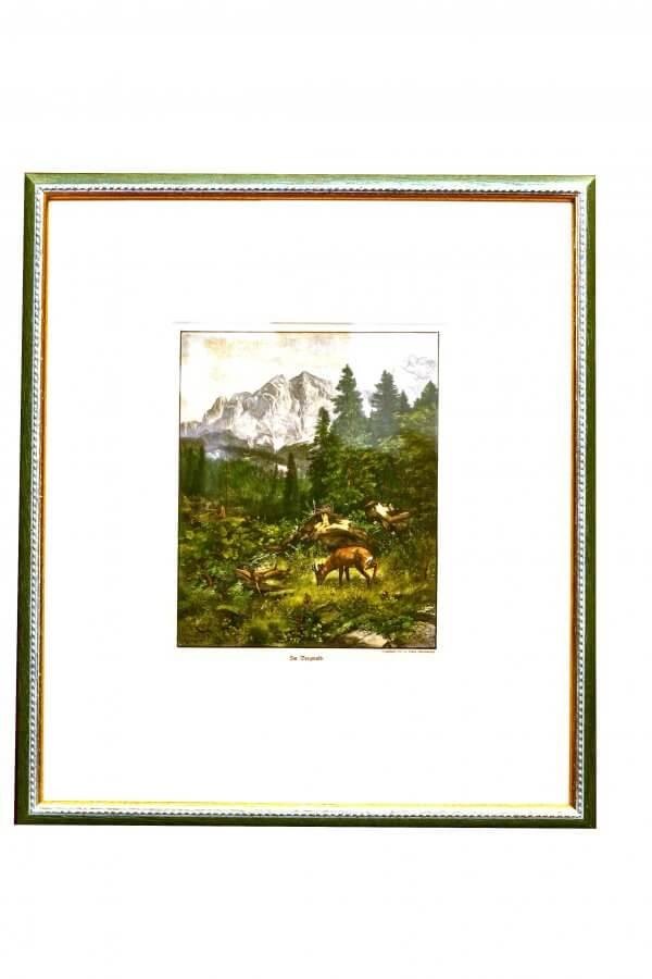 """""""Im Bergwald"""" – Originalmotiv als Xylographie von Franz Hanfstaeng, jagdlich-naturkundliches Dokument, handkoloriert"""