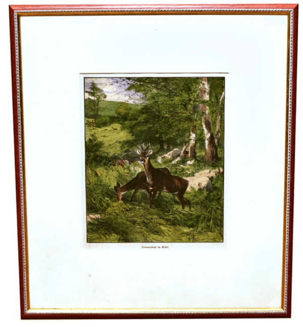 """""""Sonnenabend im Walde"""", jagdlich-naturkundliches Dokument, handkoloriert 1"""